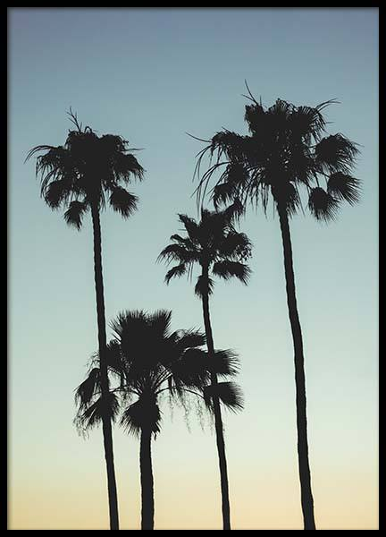 Sunset Palms Poster in the group Prints / Nature / Tropical at Desenio AB (10035)