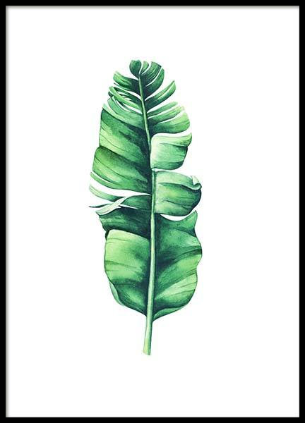 Banana Leaf Aquarelle Poster in the group Prints / Botanical at Desenio AB (10071)