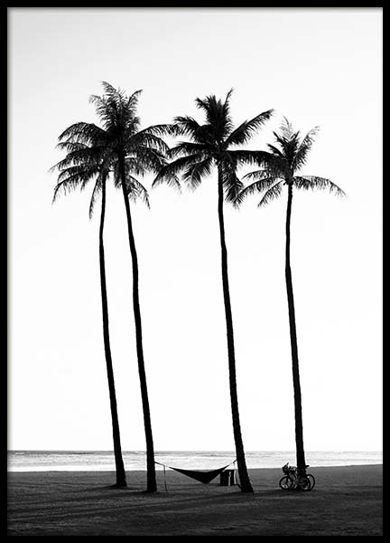 Palm Trees On Beach Poster in the group Prints / Black & white at Desenio AB (10233)