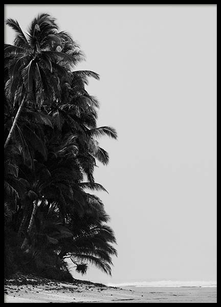 Palm Trees By Sea Poster in the group Prints / Black & white at Desenio AB (10235)
