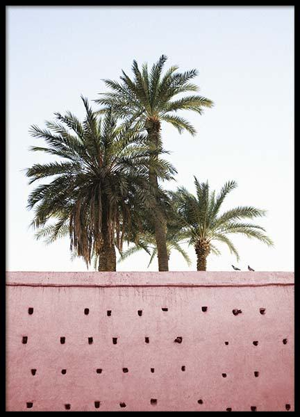 Pink Palms Poster in the group Prints / Photographs at Desenio AB (10270)