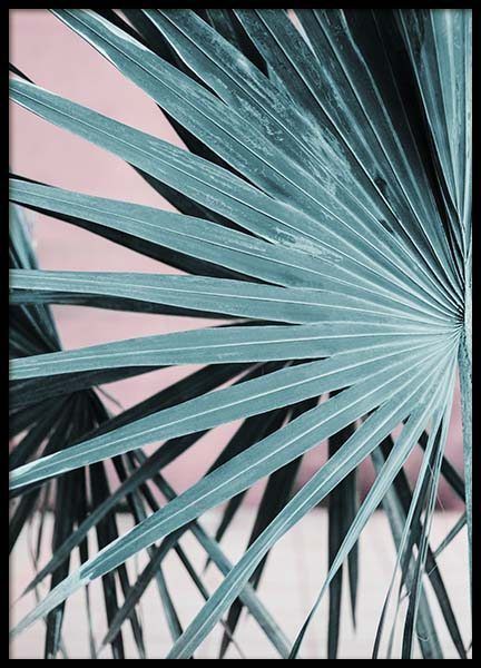 Pastel Palm No2 Poster in the group Prints / Photographs at Desenio AB (10389)