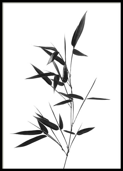Bamboo Twig Poster in the group Prints / Black & white at Desenio AB (10390)