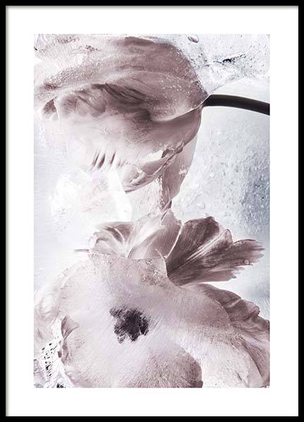 Tulipe And Ice No2 Poster in the group Prints / Photographs at Desenio AB (10410)