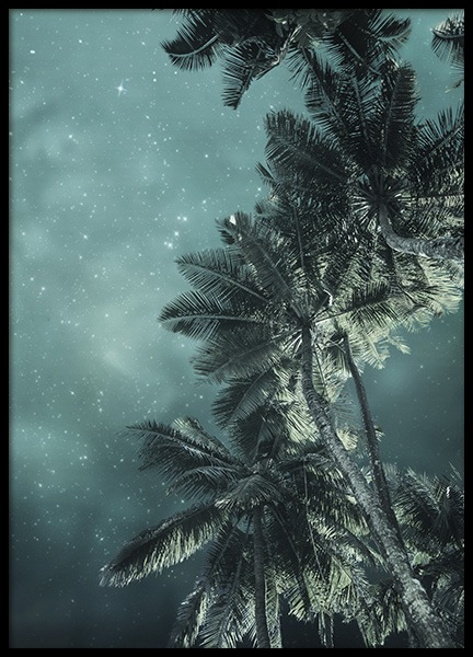 Tropical Night No3 Poster in the group Prints / Nature at Desenio AB (10647)