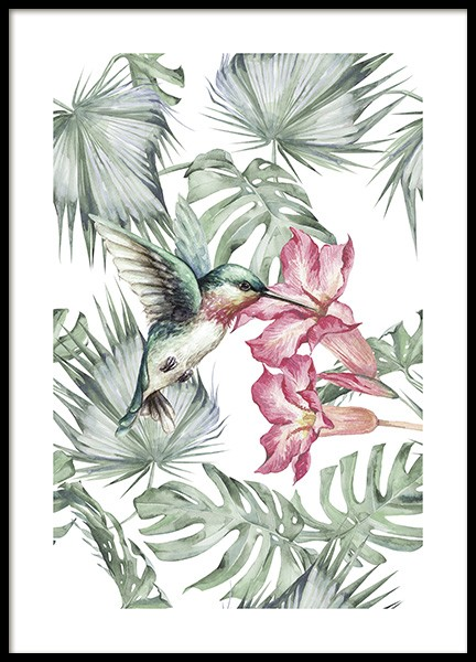Tropical Bird No1 Poster in the group Prints / Animals at Desenio AB (10648)