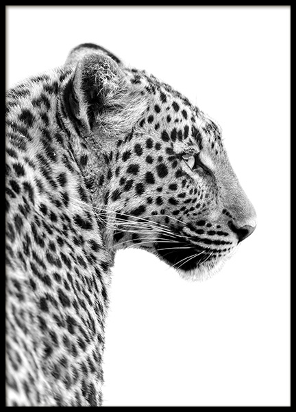 Leopard Profile Poster in the group Prints / Black & white at Desenio AB (10656)