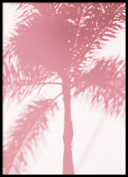 Pink Palm Shadow Poster in the group Prints / Botanical / Palms at Desenio AB (10768)