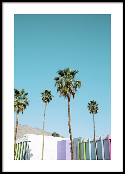 Rainbow Palms Poster in the group Prints / Nature / Tropical at Desenio AB (10789)