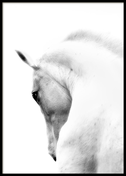 Fading Horse No2 Poster in the group Prints / Black & white at Desenio AB (10874)