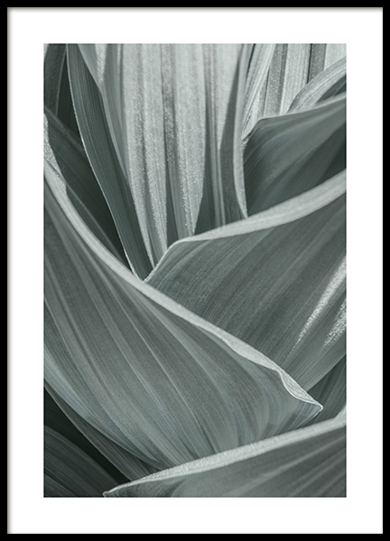 Abstract Green Leaves Poster in the group Prints / Photographs at Desenio AB (10982)