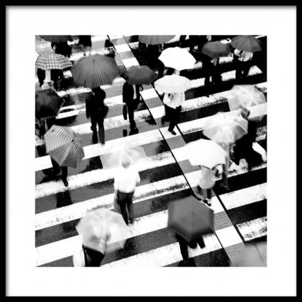 Umbrellas on Crosswalk Poster in the group Prints / Black & white at Desenio AB (11678)