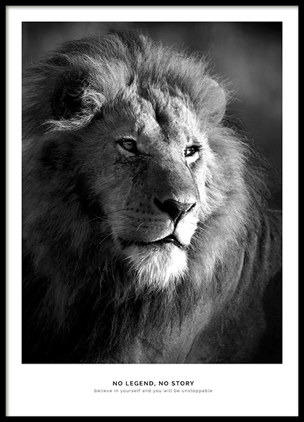 Lion Legend Poster in the group Prints / Animals at Desenio AB (11855)