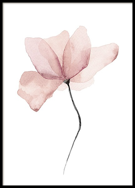 – Watercolour painting of a pink flower on a white background