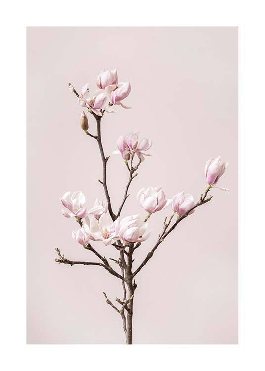 Spring Dream Poster / Photographs at Desenio AB (10212)