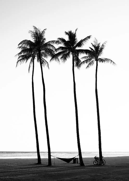 – Black and white photograph of palm trees on a beach
