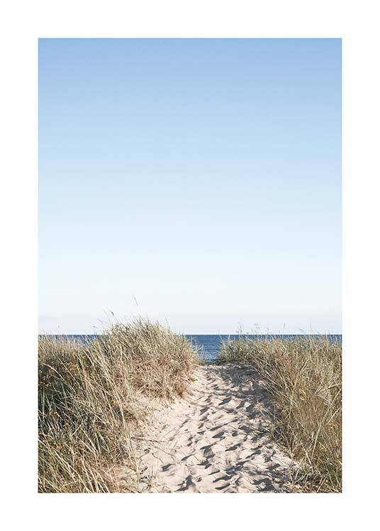 Path on beach Poster / Nature at Desenio AB (10477)