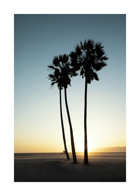 Los Angeles Sunset Poster / Tropical at Desenio AB (10786)