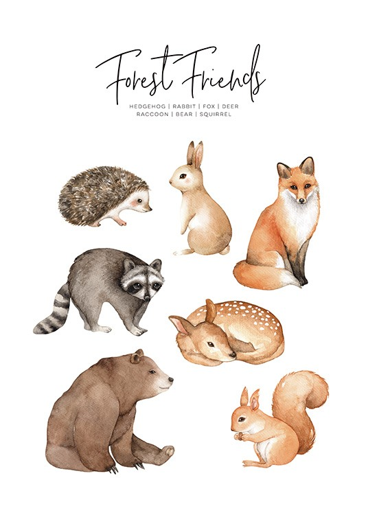 - Lovely children's poster with drawings of various woodland animals such as the hedgehog, fox, hare and squirrel.