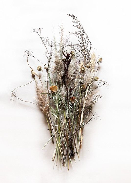 Dried Bouquet No1 Poster / Photographs at Desenio AB (11796)