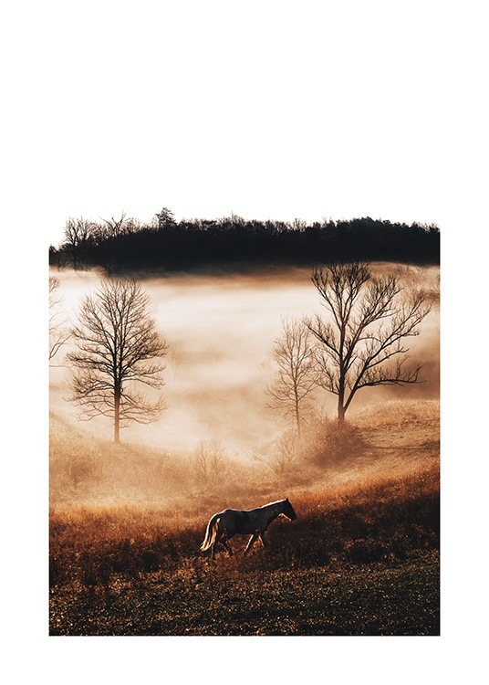 Horse in Landscape Poster / Photographs at Desenio AB (11862)