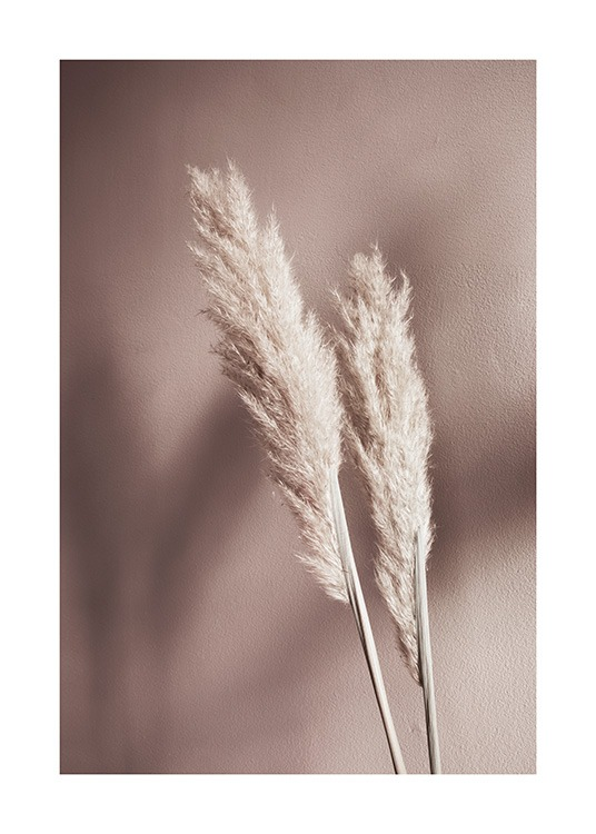 Beige Reeds No2 Poster / Photographs at Desenio AB (12426)